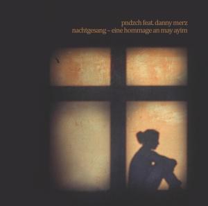 Musikalbum pndzch feat. danny merz - eine hommage an may ayim